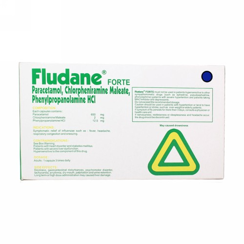 FLUDANE FORTE BOX 100 KAPSUL