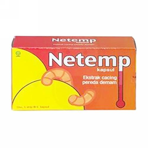 NETEMP BOX 30 KAPSUL